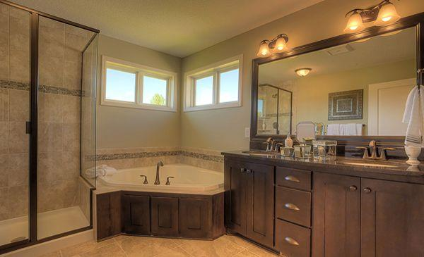 Master Bathroom Idea Luxury