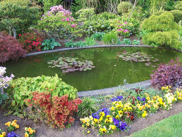 Make garden pond through amazing pond design ideas freshnist for Small garden fish pond designs
