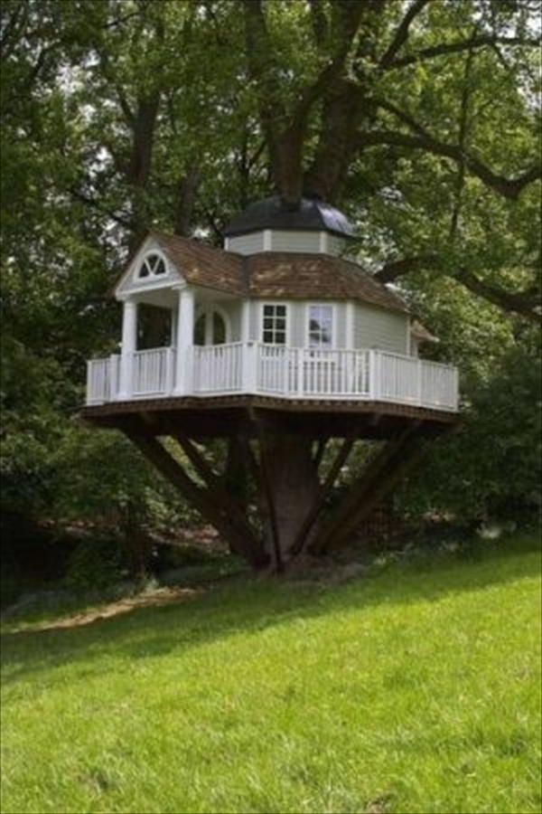 kids-tree-house-designs-and-photos (18)