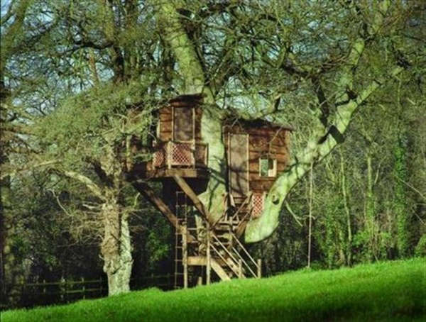 kids-tree-house-designs-and-photos (24)